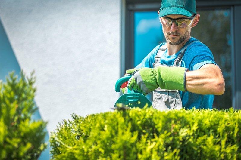 california business liability insurance