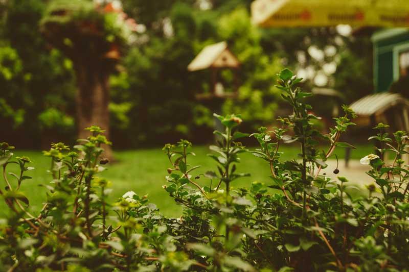 homeowners-remland-insurance-orange-ca