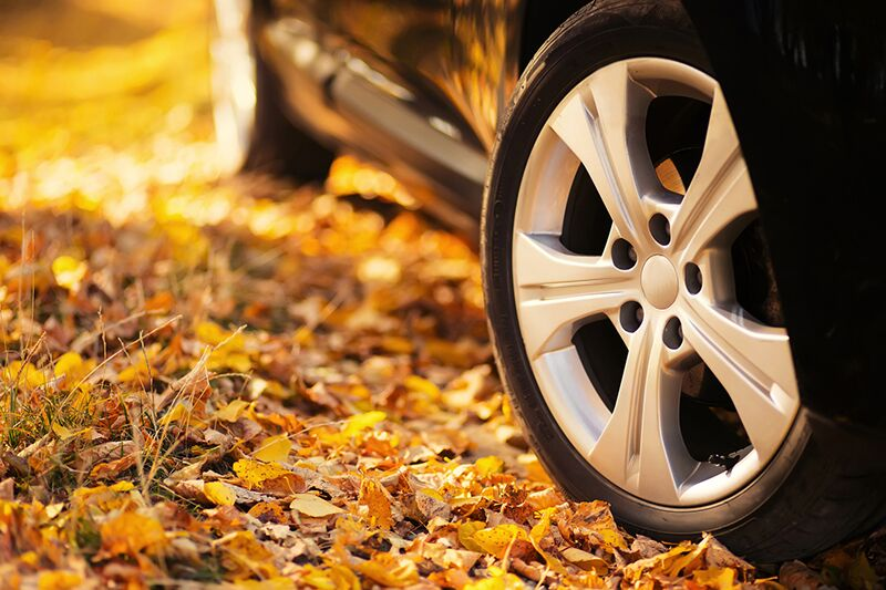 Tips for Your Thanksgiving Road Trip, tips for an easy Thanksgiving road trip